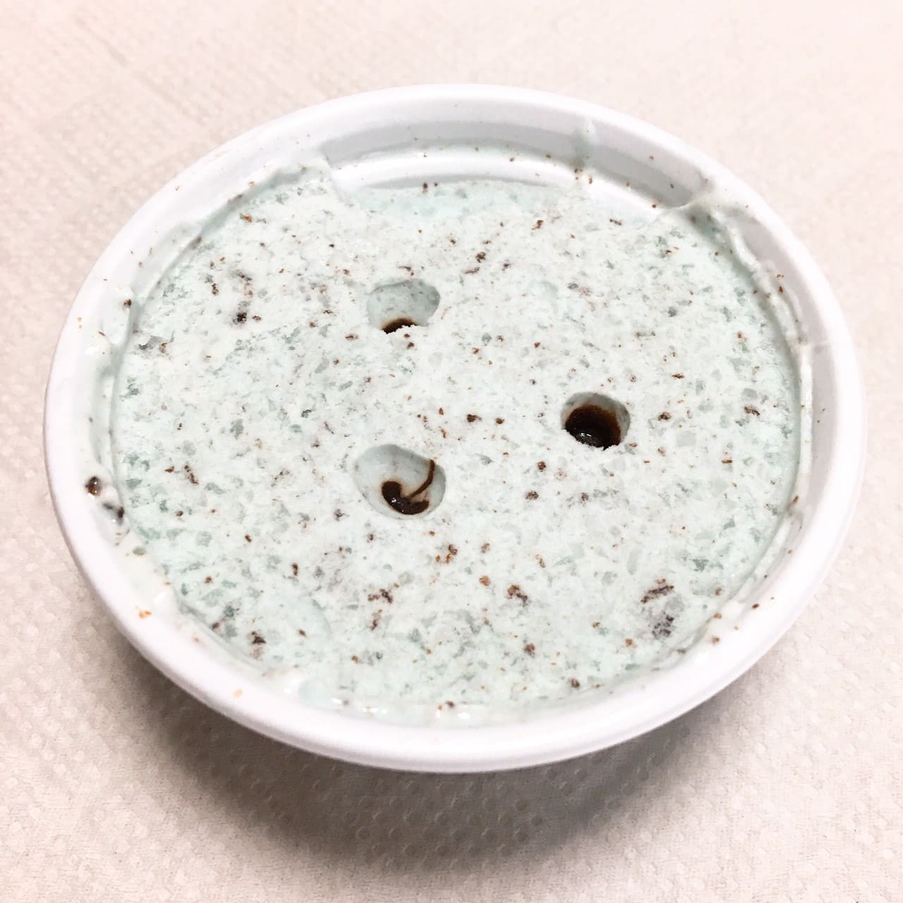 デザート氷クリーム仕立て チョコミント